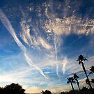 Contrails by Sue  Cullumber