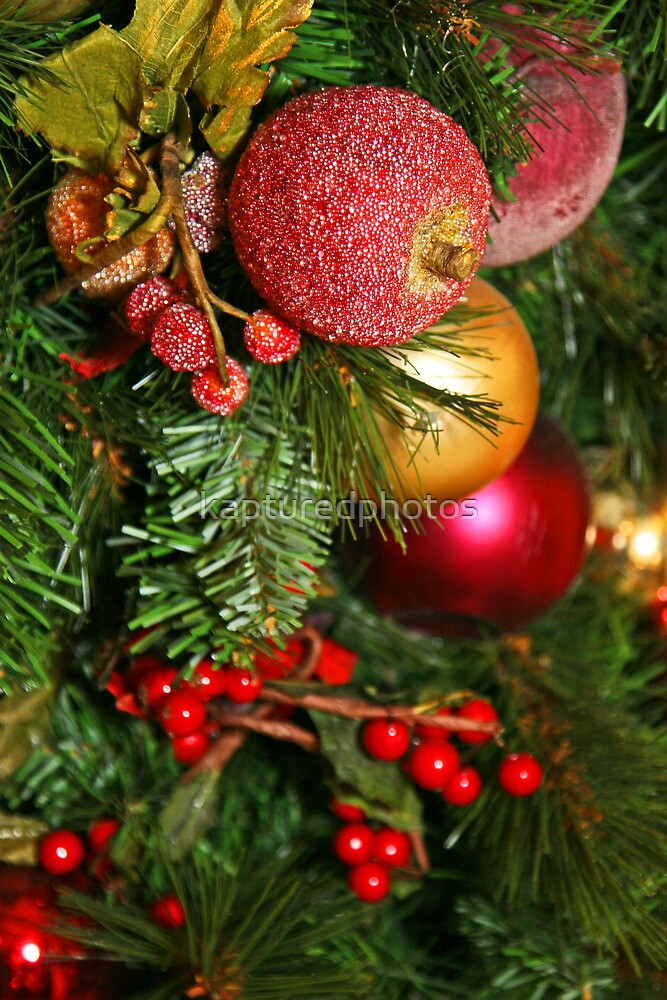 Christmas Bulbs and Fruit by kapturedphotos