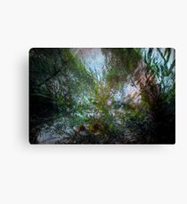 Gazing up at the sky through willows Canvas Print