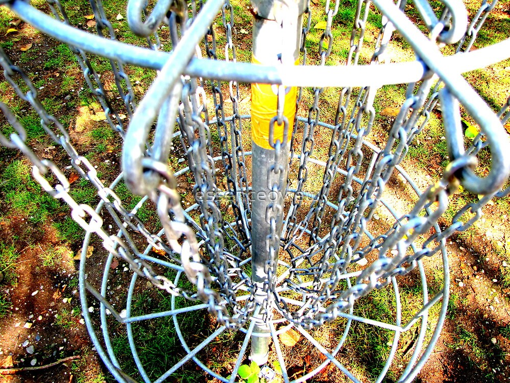 Disc Golf Basket by essenceoview