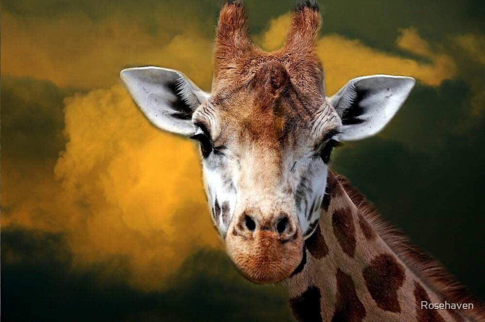 """Mr Giraffe..."" by Rosehaven"