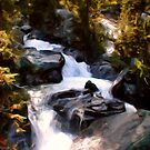 Waterfall in the Woods by Malinee Ganahl