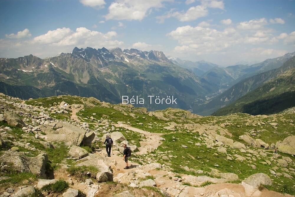 Mountain walking by Béla Török