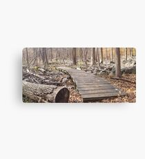 Sourland Mountain Trails Canvas Print