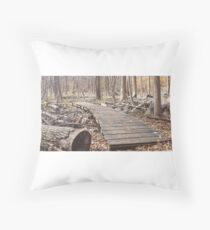 Sourland Mountain Trails Throw Pillow