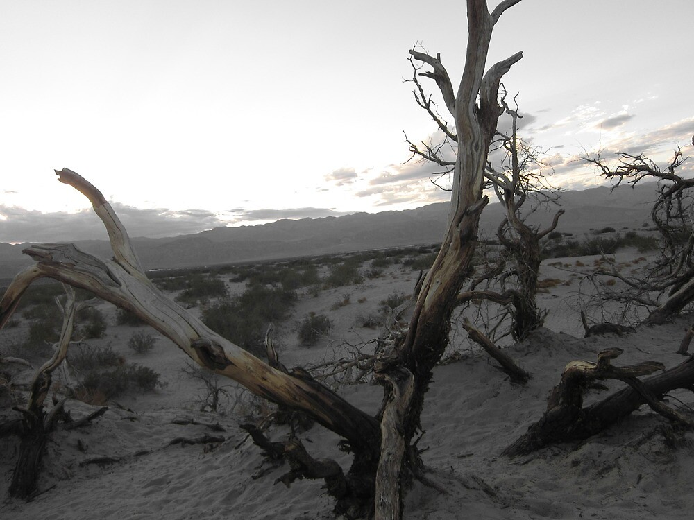 Sunset in Death Valley by justineb