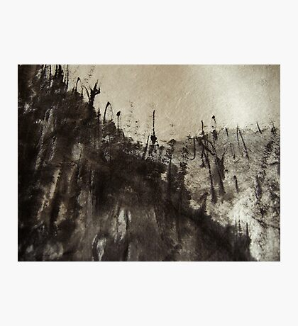 high up mountain forest .... snowy sky  Photographic Print