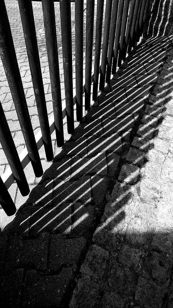 Fenced in by ragman