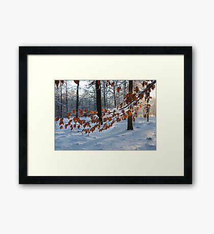 Surprising encounter Framed Print