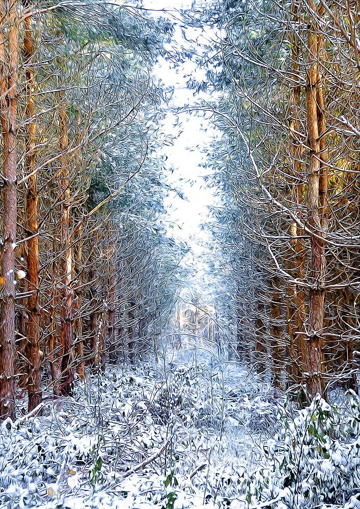 Winter by Svetlana Sewell
