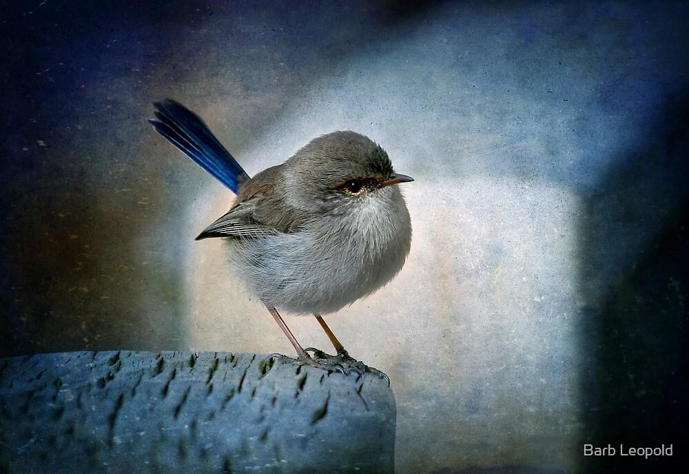 Misty Blue by Barb Leopold
