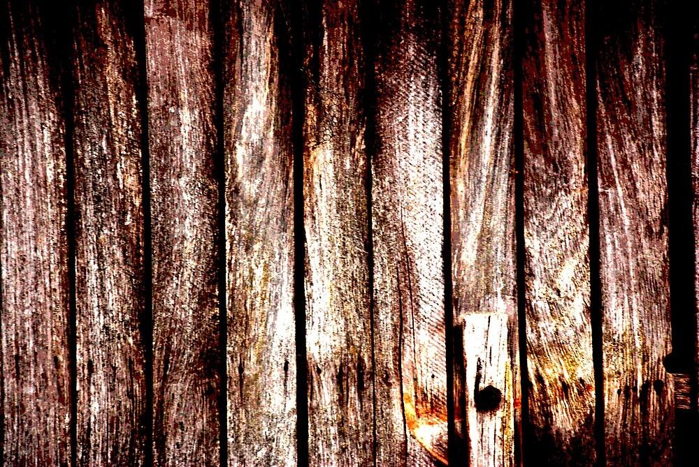Wood door by lseary