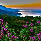 Playa de Uvita Costa Rica by Phillip S. Vullo Jr.