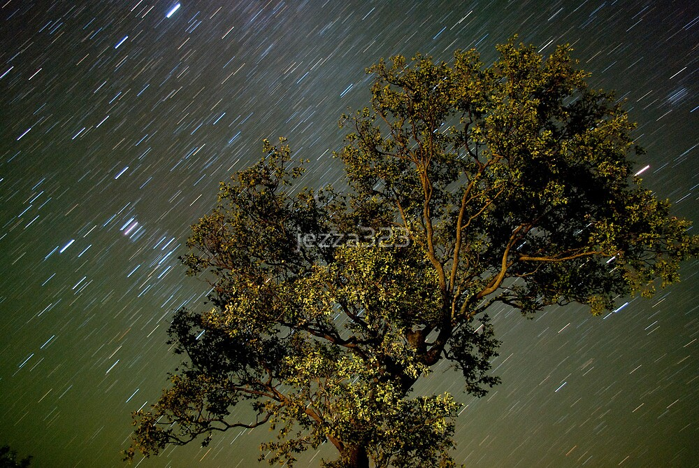 Still Tree - Moving Stars by jezza323