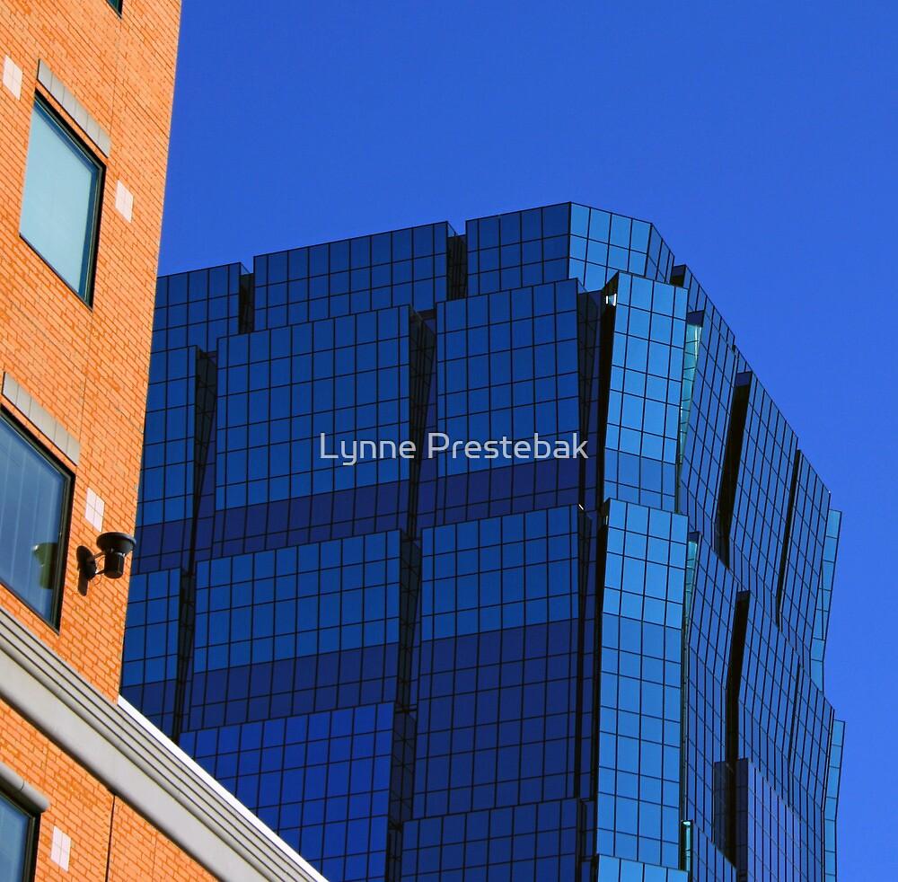 the beauty of blue by Lynne Prestebak