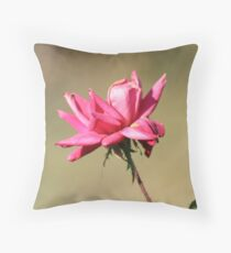 Cold Curl Throw Pillow
