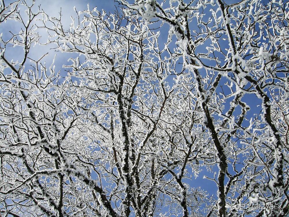winter tree by GOSIA GRZYBEK