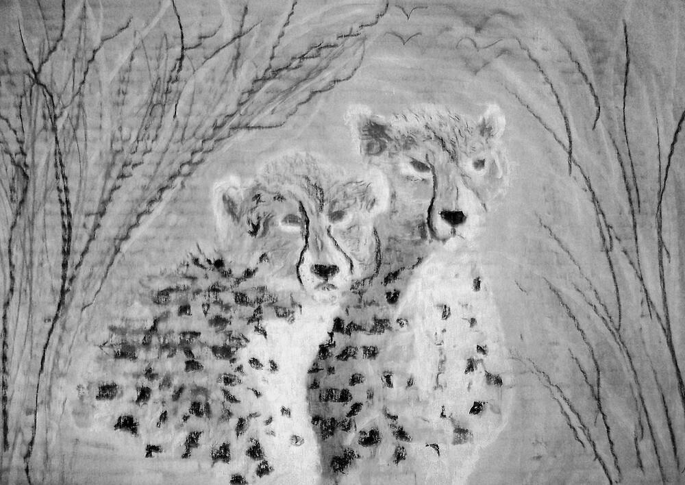 Cheetah cubs  by GEORGE SANDERSON
