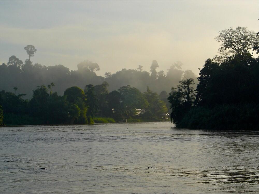 Borneo Mist by elbladeo