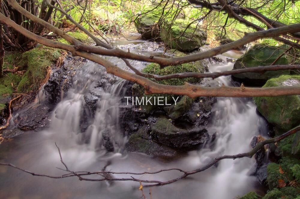 blur    ( gap of dunloe co. kerry) ireland by TIMKIELY