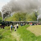 Steam train on incline, Germany. by David A. L. Davies