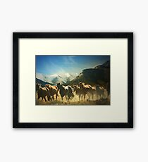 Winter Crossing Framed Print