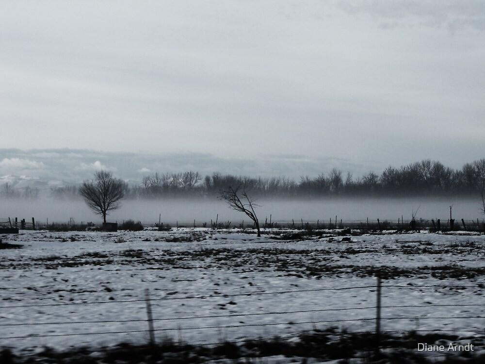 Low Fog by Diane Arndt