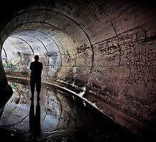 Reg - Maze Silhouette by cc2010