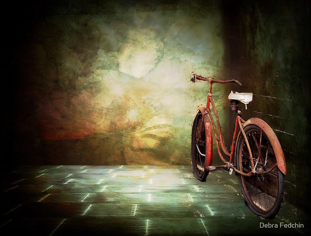 The Bicycle by Debra Fedchin