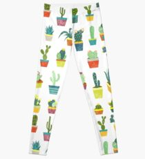 Succulents Leggings