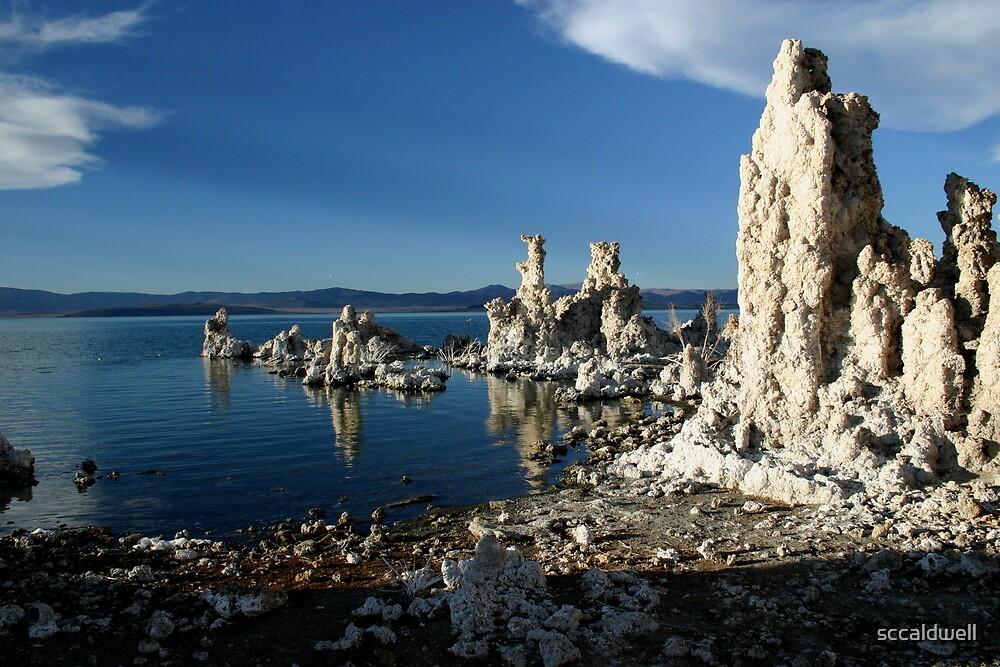 Mono Lake, California  by sccaldwell