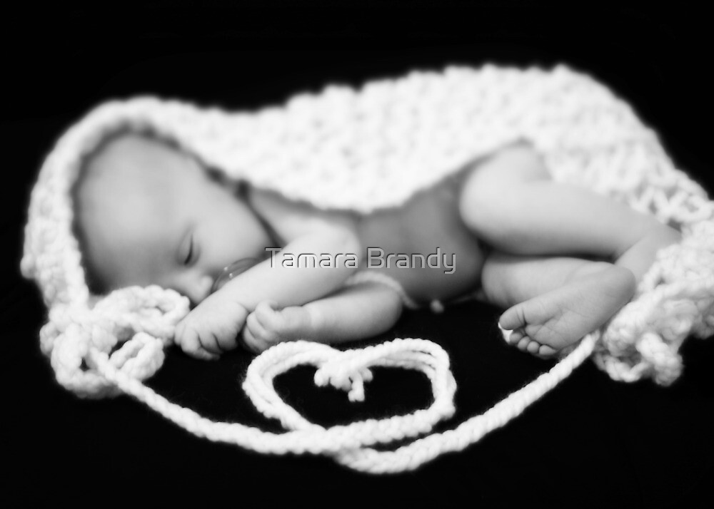 Baby Blake {15 days old} by Tamara Brandy