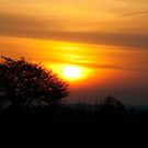 Caledon Sunrise by LisaPiellusch
