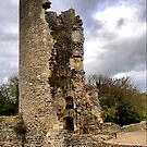 Farleigh Hungerford Castle  ( 12  )  by Larry Davis