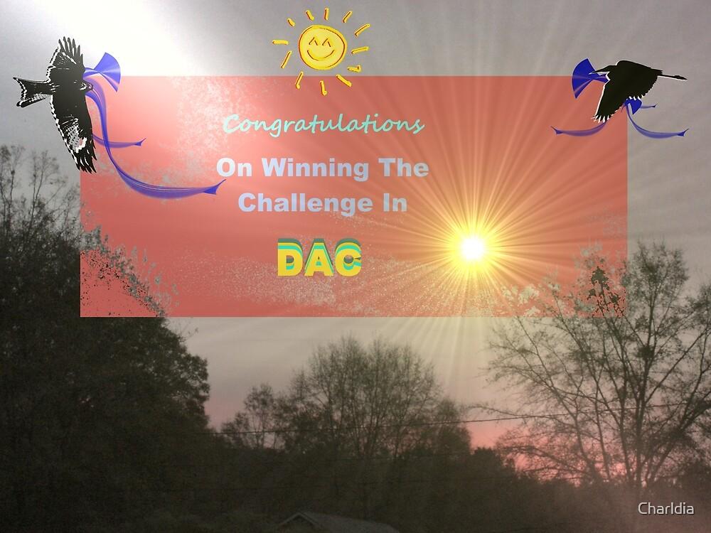 DAC Challenge Banner by Charldia