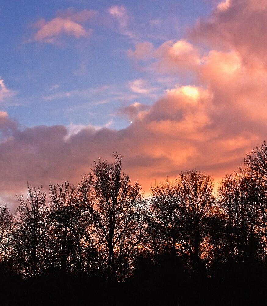Evening Sky by Lee Davies