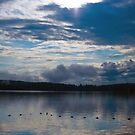 Sunrise Over Eagle Lake (6) - Mikisew Provincial Park by LisaPiellusch