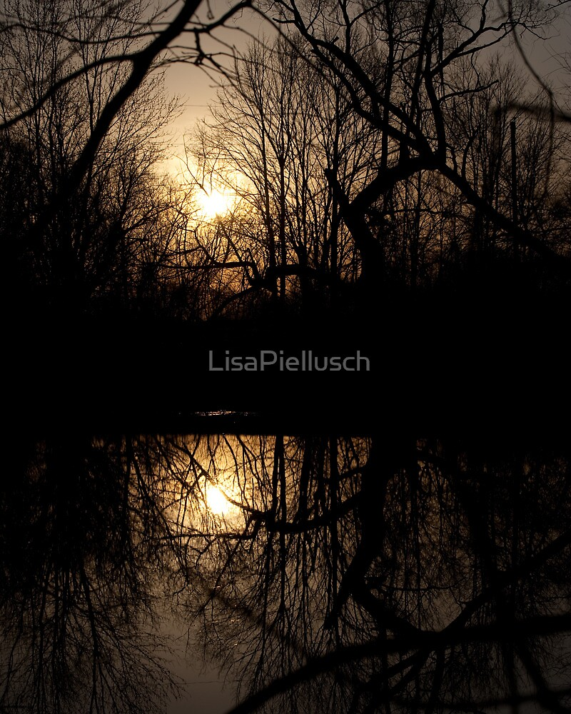 Sunrise Near Bolton, Ontario Canada by LisaPiellusch