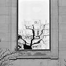 Tree Portrait by Sandra Guzman