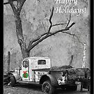Happy Holidays! by Sue  Cullumber