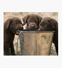 The Bucket Brigade Photographic Print