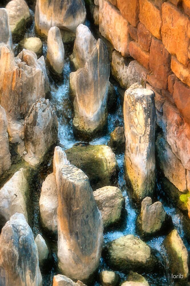 Watering Rocks by lorib