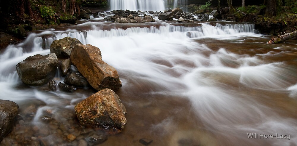 Liffy Falls Rapids by Will Hore-Lacy