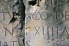 Roman Letters by Blake Steele