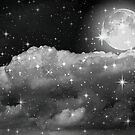 Wishing upon a star!!! ©  by Dawn Becker