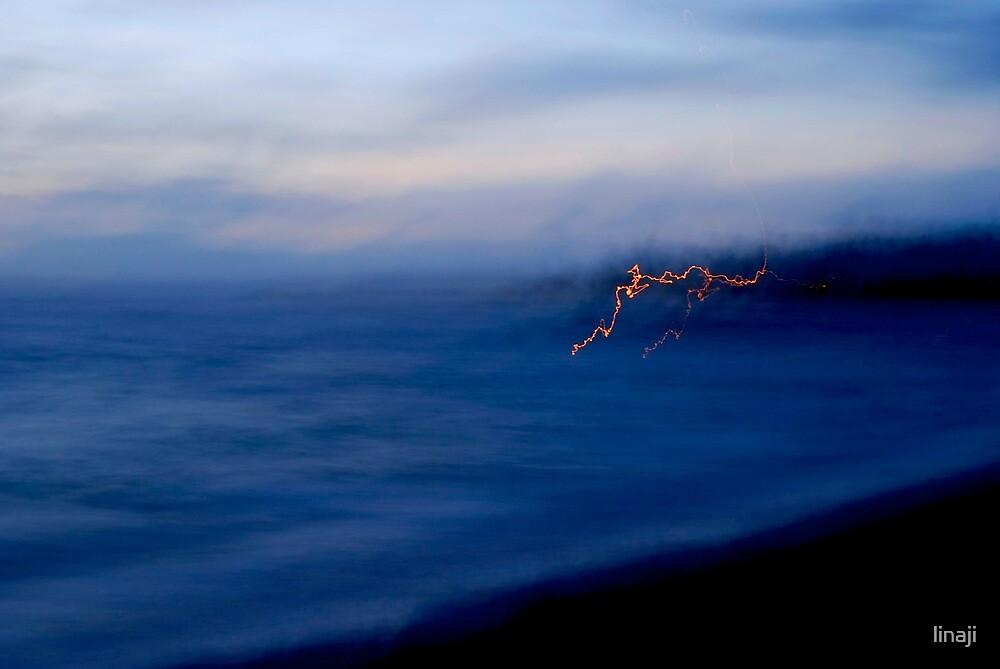 A Morning Thought... Kauai Sensual Series by linaji