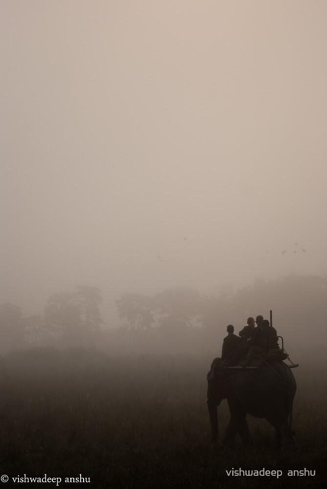 morning elephant safari by vishwadeep  anshu