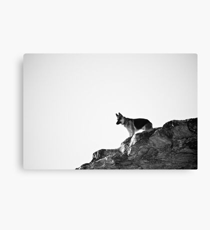 Cliff Top Canvas Print
