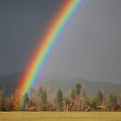 Rainbow's End by Stephen  Van Tuyl