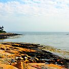 Lighthouse and Rocks, Prospect Harbor, Maine by fauselr